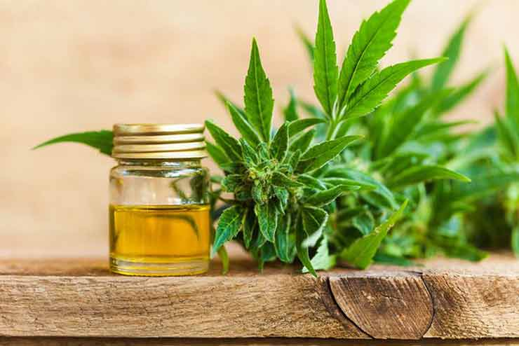 How Much does Hempworx Cbd Oil Cost?